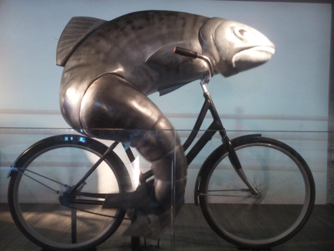 À tire-d'Elles, Femmes, vélo et liberté 3