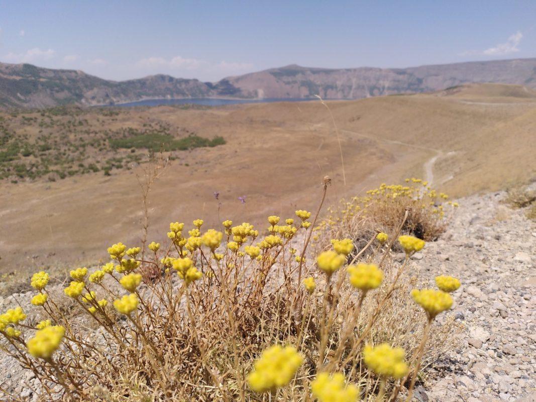 Ararat #3: Nemrut Dagi 3
